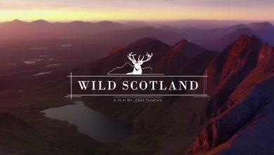 Bild von Wild Scotland – Höher gehen die Highlands nicht mehr