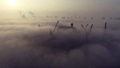 """Photo of Mystische Bilder in """"A Misty Flight"""""""