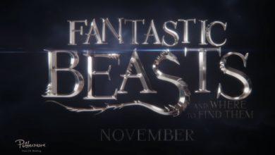Bild von Trailer: Fantastic Beasts and Where to Find Them