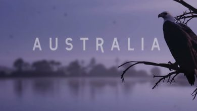 Photo of AUSTRALIA – The Eagle Eye