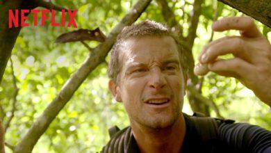 Photo of Du gegen die Wildnis neue interaktive Serie bei Netflix