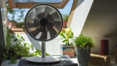 "Photo of Der Sommer kann kommen! – Balmuda ""The GreenFan"" im Test"